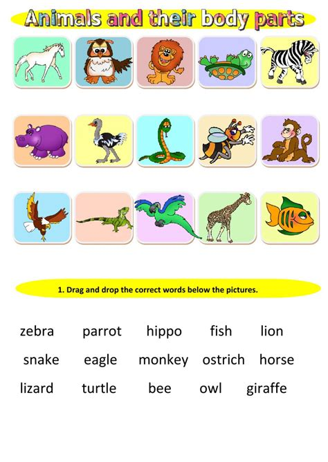 Animals And Their Body Parts  Interactive Worksheet