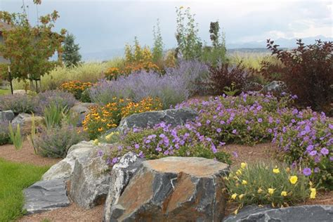 colorado landscaping ideas colorado back yard landscaping ideas specs price release date redesign