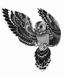 owl in mid flight!   Nicholas tattoo   Pinterest   Owl