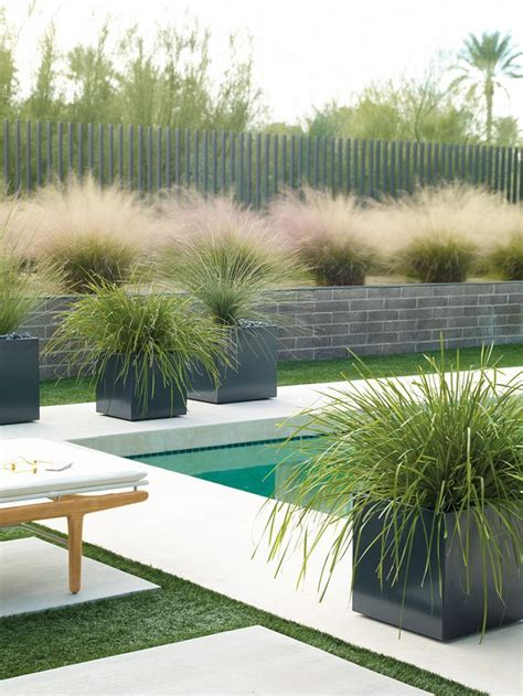 Modern Outdoor Planters by Loving This Look Of Soft Grasses Paving And Modern
