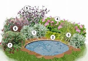 Plantes Vivaces Autour D Un Bassin : massifs autour de bassins de jardin ~ Melissatoandfro.com Idées de Décoration