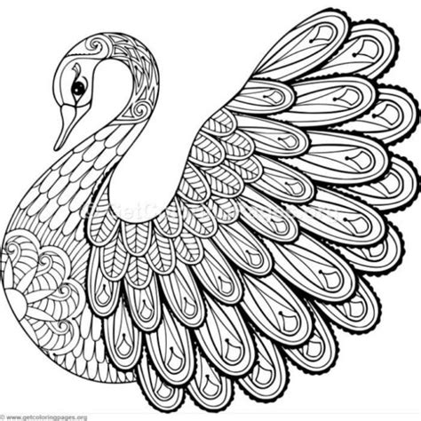 Coloring Easy by Easy Zentangle Coloring Pages Getcoloringpages Org