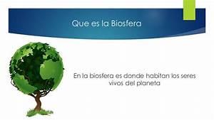 Biosfera: Definición para niños