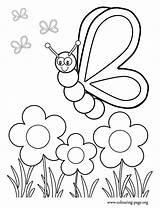 Coloring Garden Flower Pages Print sketch template