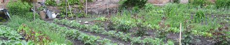 Garten Pflanzen Verträglichkeit by Mischkultur Vertr 228 Glichkeit Mein Garten Ratgeber
