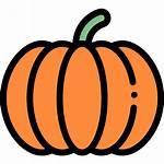 Pumpkin Icons Icon Flaticon