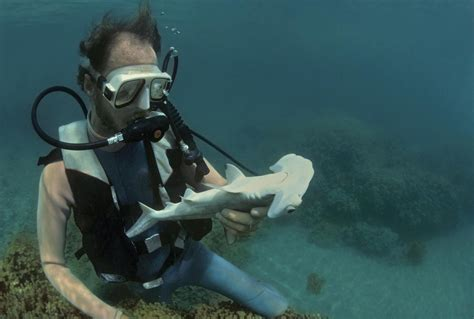 Explore a Career as a Marine Biologist