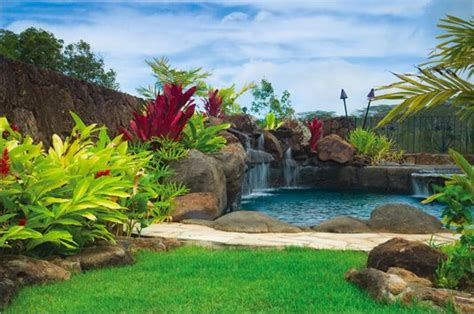 vacation  day   exotic landscape design
