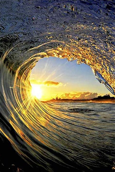 3d Abstract Art Of Tidal Waves And Trees Wave Tunnel Hd