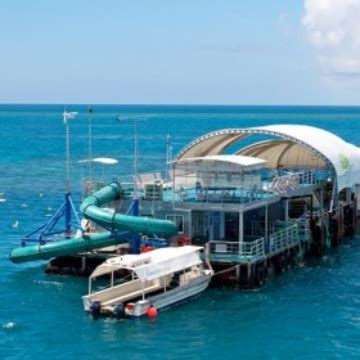 Glass Bottom Boat Tours Airlie Beach by Visit Cairns Great Barrier Reef Pontoon Ex Airlie