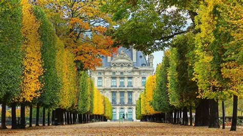 Louvre Autumn Bing Wallpaper Download