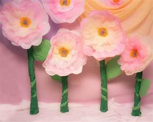Blumen Aus Seidenpapier : gro e seidenpapier blumen st tzen stockfoto bild von fotographie stufe 55779622 ~ Orissabook.com Haus und Dekorationen
