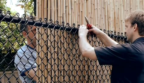 how to cover a chain link fence for privacy ways to cover an ugly chainlink fence