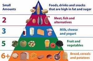Food Pyramid For Adults 2017 - Food Ideas