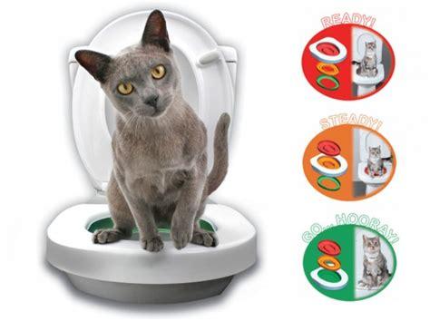 toilettes pour chat un kit wc pour apprendre 224 votre chat 224 faire ses besoins insolite