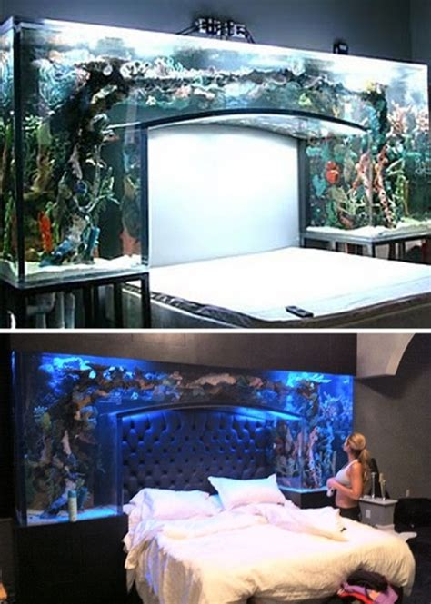 bedroom fish tank 9 best fish tank beds images on bedroom 10433 | 67869ed6d6843c940f007755173788cd