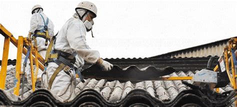 asbestos removal adelaide   day quotes