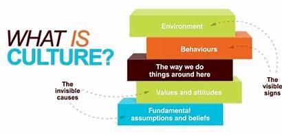 Culture Social Horizontal Race Dimension Corporate Behaviours