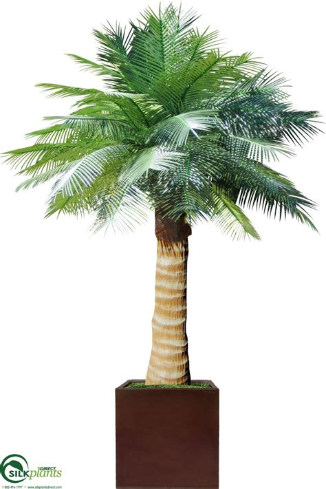 artificial coconut palm tree silk palm tree faux