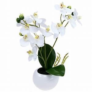 Künstliche Orchideen Im Topf : orchideen im topf 30cm wei kaufen in schweiz ~ Watch28wear.com Haus und Dekorationen