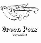 Coloring Pages Peas Vegetable Green sketch template
