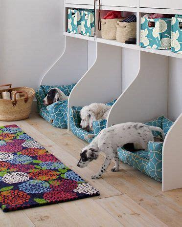 chambre de chien 10 espaces pour les chiens dans la maison