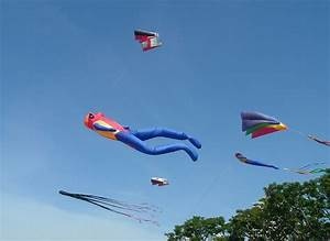Kite Flying 101 In North County San Diego