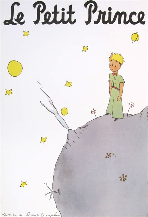 Picture This  G1367  Le Petit Prince