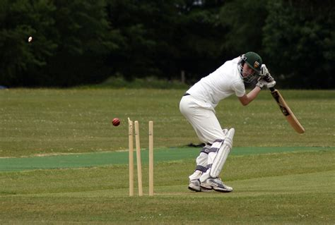Cricket Images File Cricketer Bowled Jpg Wikimedia Commons