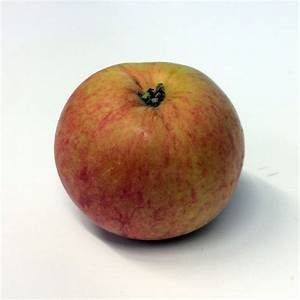 Wealthy  Apple