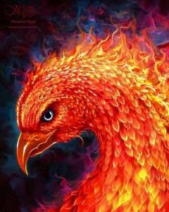 Image - 600x753 11376 Phoenix Head 2d fantasy bird phoenix ...
