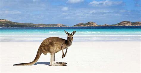 Visiter L'australie En Ayant Un Petit Budget