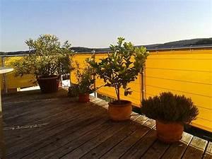 Sichtschutz Balkon Nach Maß : balkon sichtschutz nach ma balkon sichtschutz ~ Bigdaddyawards.com Haus und Dekorationen