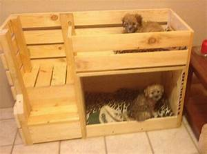 How to build a bunk bed for your pets DIY projects for