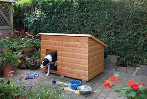 Wooden large dog kennels duncombe sawmill local and uk for Puppy dog kennels