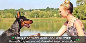 How to get an emotional support animal dog in 2018 for How to get an esa letter from your doctor