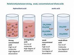 Acids In Food And Drinks  U2013 Bush Tucker  Chemistry