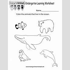 Learning Worksheet  Free Kindergarten Learning Worksheet For Kids