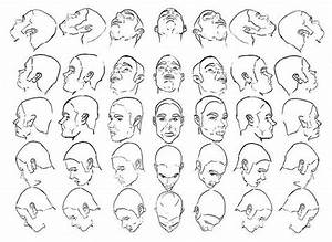 Head Reference Drawing At Getdrawings