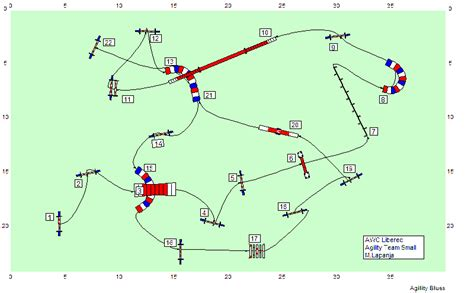 parcours agility occasion