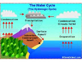 Water Cycle Project 5th Grade