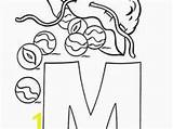 Marble Coloring Pages Result Google Divyajanani Handphone sketch template