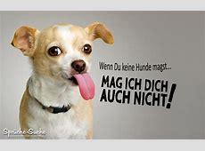 Lustige Hundefreunde Sprüche SprücheSuche