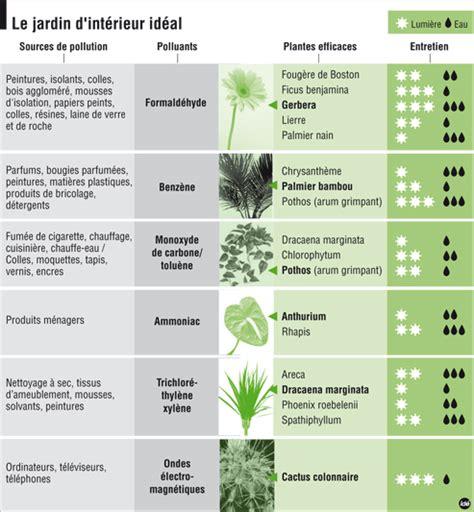 plante de bureau feng shui plantes dépolluantes blogfengshuilab