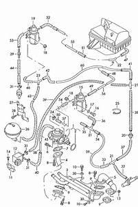 Vacuum System  Exhaust Gas Recirculation Passat  4motion