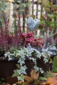 Welche Blumen Blühen Im Winter Draußen : die 31 besten bilder von fensterbank dekorieren ~ Watch28wear.com Haus und Dekorationen