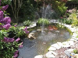 Photo un petit coin du jardin for Coin jardin