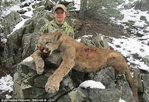 World Record Cougar   www.imgkid.com - The Image Kid Has It!