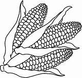 Coloring Vegetables Corn Pages Preschool Printables Worksheets Fruits Kindergarten sketch template