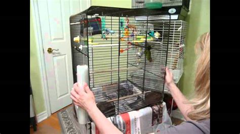 cleaning  bird cages  cages  clean youtube